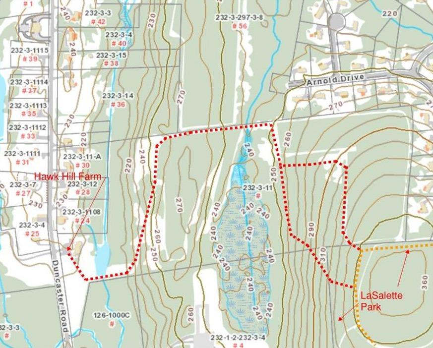 Hawk Hill Trail