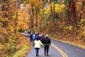 Hikers on Hoskins Road, Bloomfield