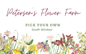 Petersen's Flower Farm pick your own in South Windsor
