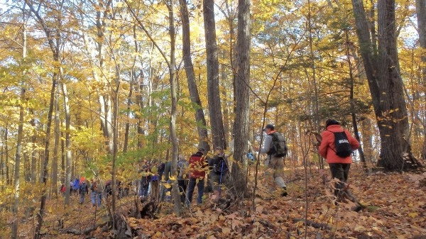 Photo of hikers passing between trees and over fallen leaves in Penwood State Park during the hike in 2019